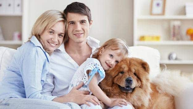 Wills & Trusts dog-young-family Direct Wills Guildford